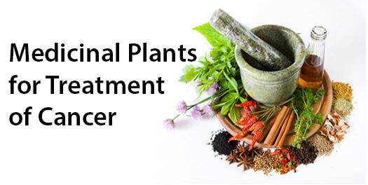 Treatment of Cancer with Ayurveda