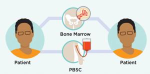 Autologous Bone Marrow Transplant