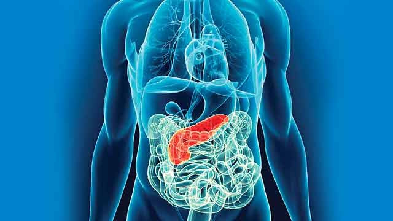 What is Intestinal Transplant